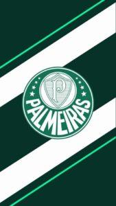 Wallpaper Palmeiras Celular