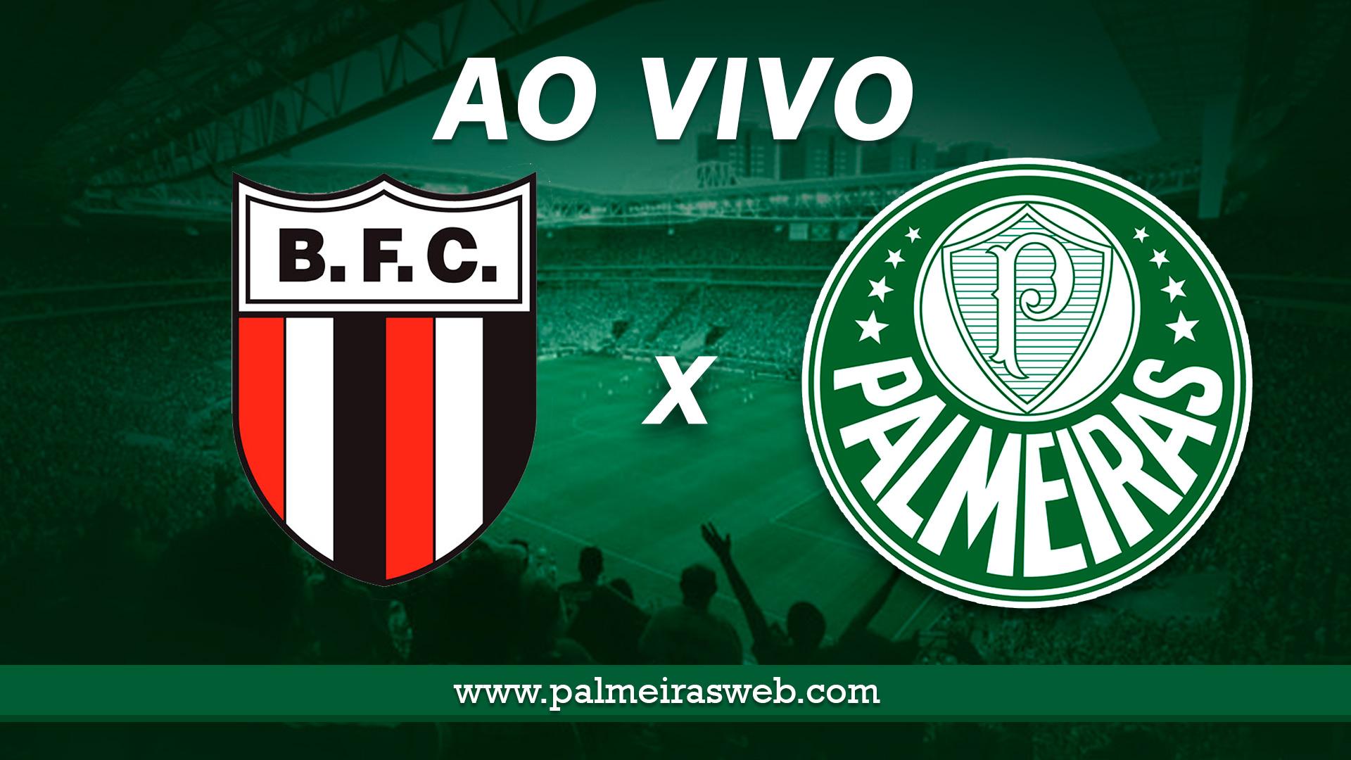 Botafogo-SP x Palmeiras AO VIVO